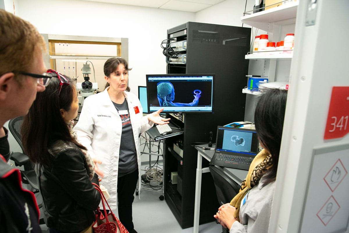 Dr. Cecile Terrenoire